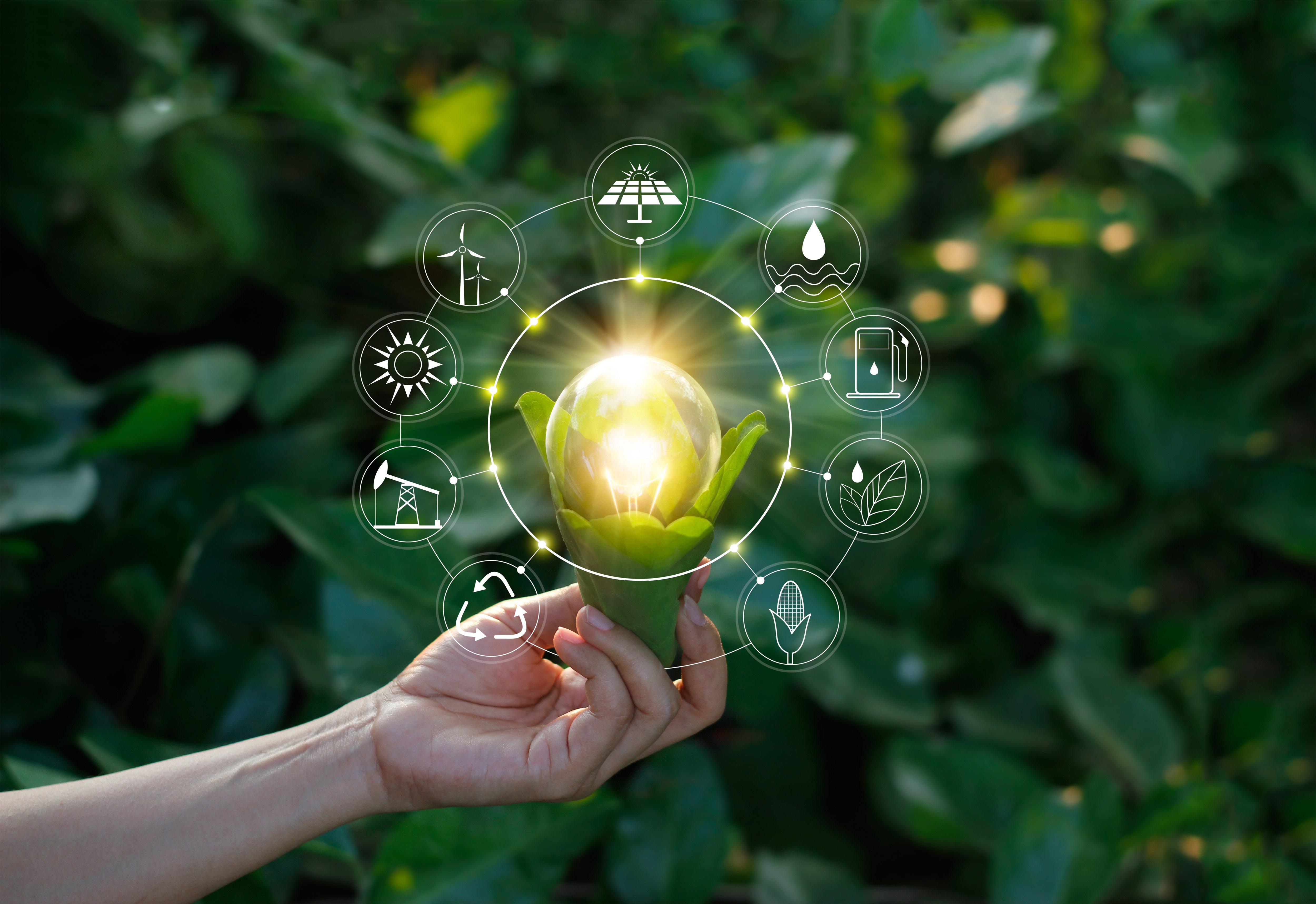 innovation_nature